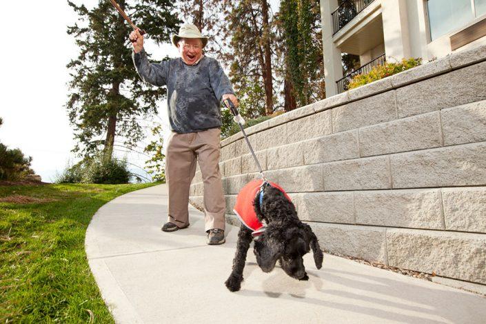 Regency - Dog walking